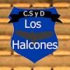 Informe de Los Halcones